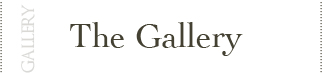 Holly Snapp Gallery - La Galleria